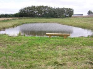 bålpladsen og Vejerslev sø